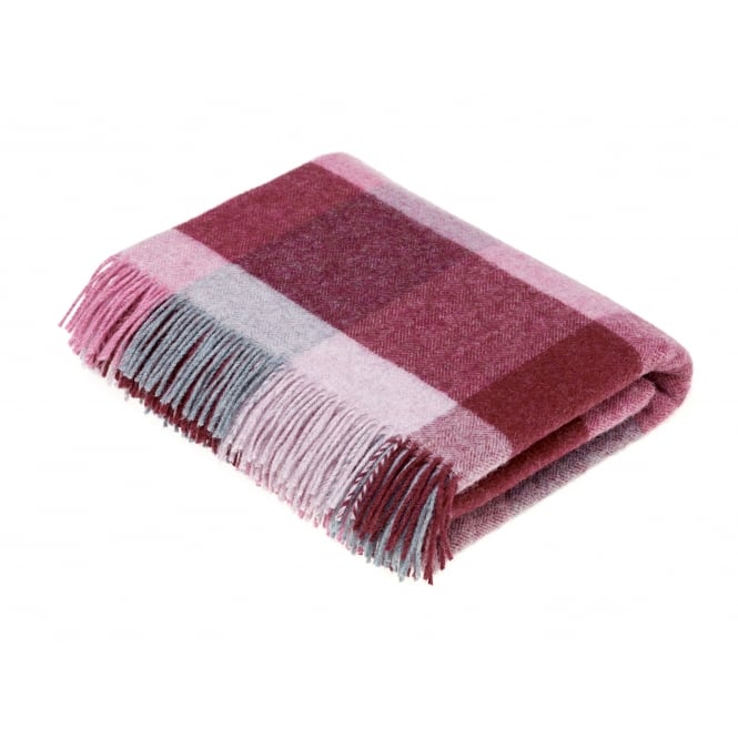 Bronte By Moon Rome Check Pure New Wool Throw - Pink/Aqua