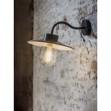 Swan Neck Outdoor Light in Carbon - Steel