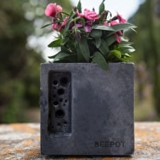 Beepot Concrete Planter & Bee Hotel - Mini Charcoal