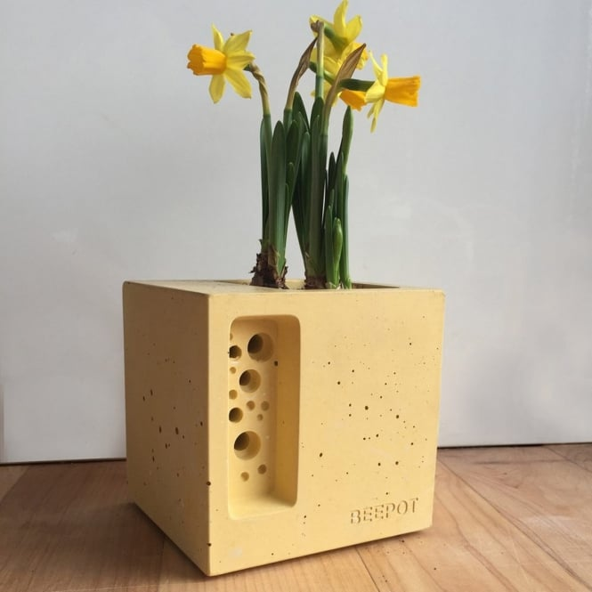 Green & Blue Beepot Concrete Planter & Bee Hotel - Mini Cotswold Yellow
