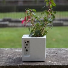 Beepot Concrete Planter & Bee Hotel - Mini
