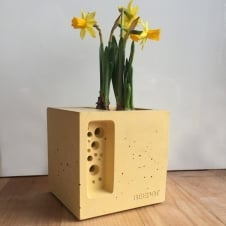 Beepot Mini Concrete Planter & Bee Hotel - Cotswold Yellow