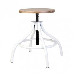 Delores Adjustable Stool - White